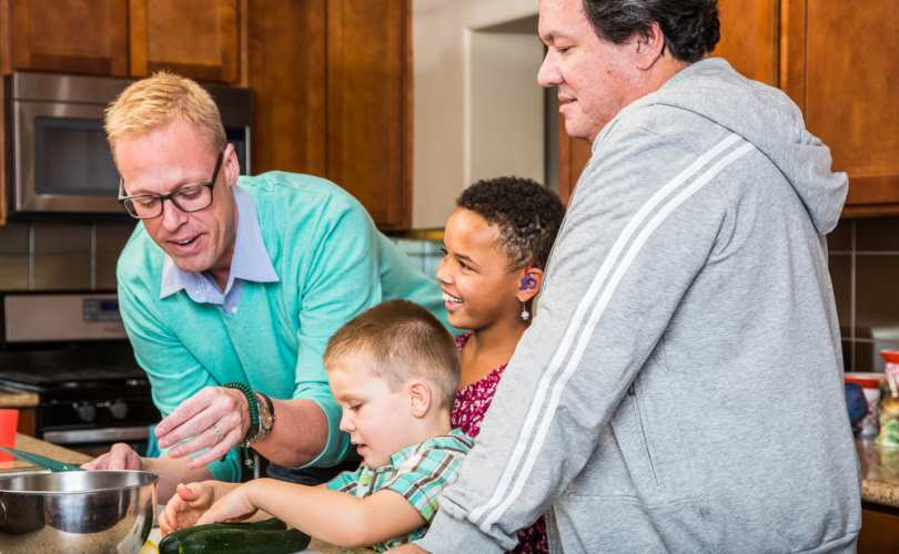 Same-sex couples strengthen and affirm basic family values