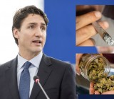 Trudeau vowed to legalize marijuana across Canada by July